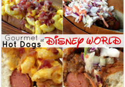Gourmet Hot Dogs at Disney's Fairfax Fare!