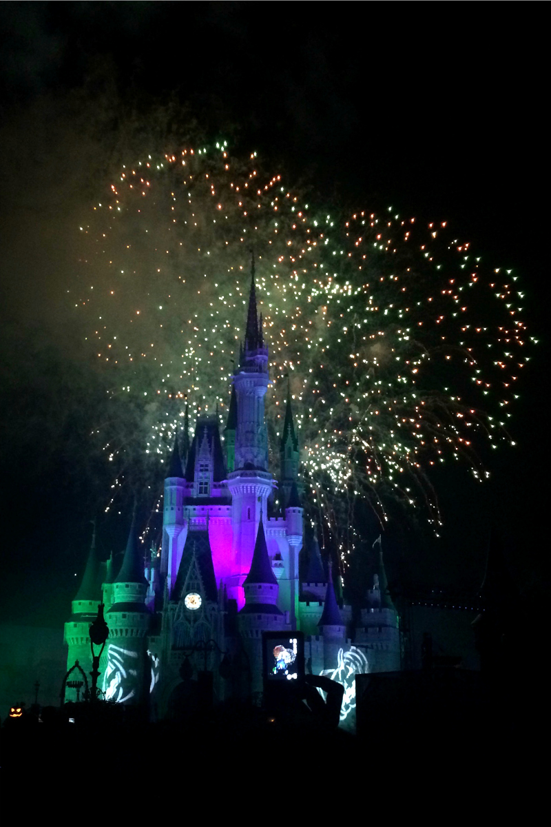 Best Disney Fireworks Viewing Area