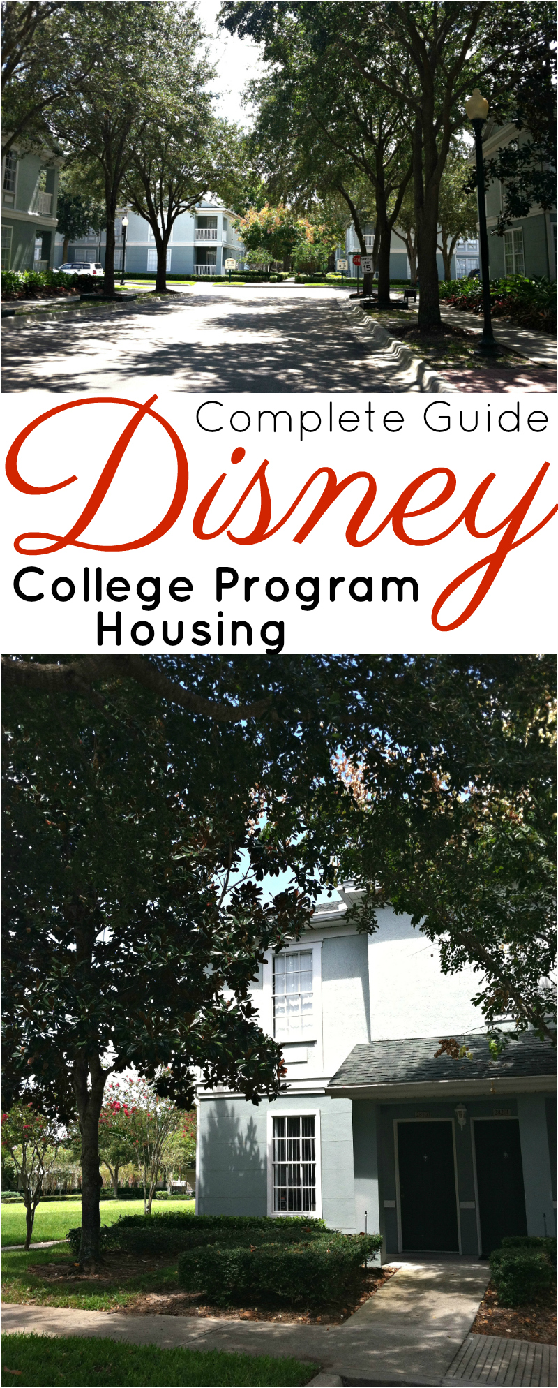 Complete Guide to Disney College Program Housing